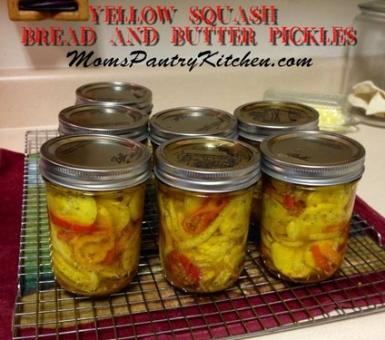 Yellow Squash Bread And Butter Pickles